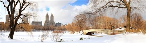 David Deng  - Winter in Central Park by David Deng