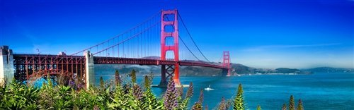 Sean Davey  - San Francisco Blue by Sean Davey