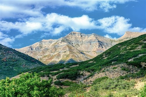 Sean McGrath  - Looking Out the Front Door Orem UT by
