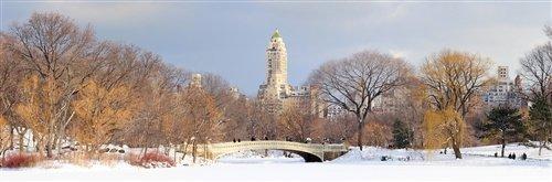 David Deng  - Bow Bridge Central Park New York by David