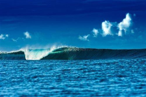 Anthony Ghigia  - La Jolla Reef by Anthony Ghigia