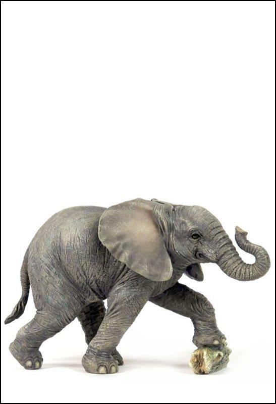 BABY ELEPHANT KICKING ROCK