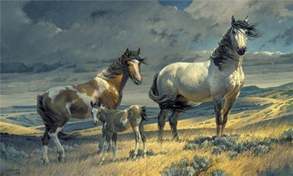 Windy Ridge by Nancy Glazier