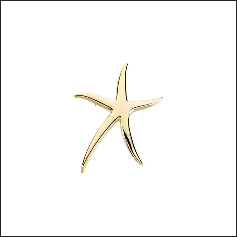 STARFISH BROOCH / PENDANT