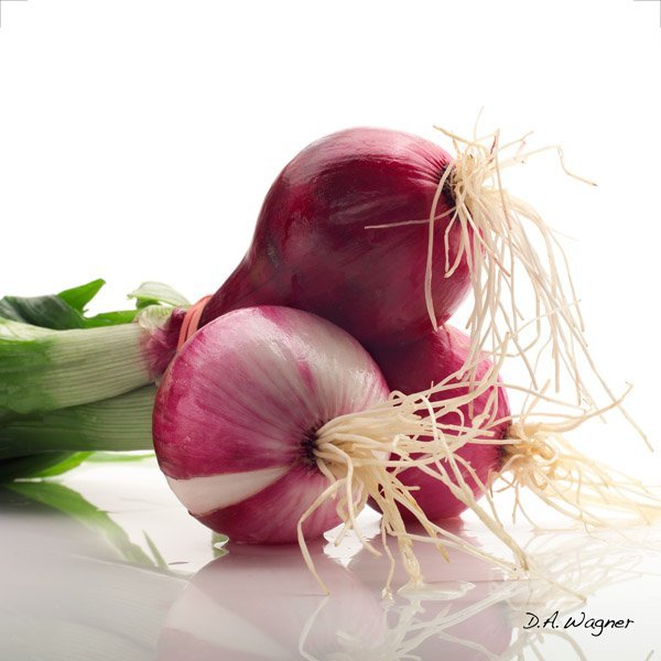 Red Onions by David Wagner