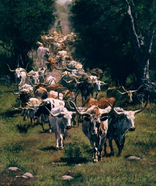 Texas Trails by Ragan Gennusa
