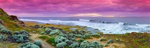 Sean Davey  - Dreaming Of Winki Pop Beach Australia by