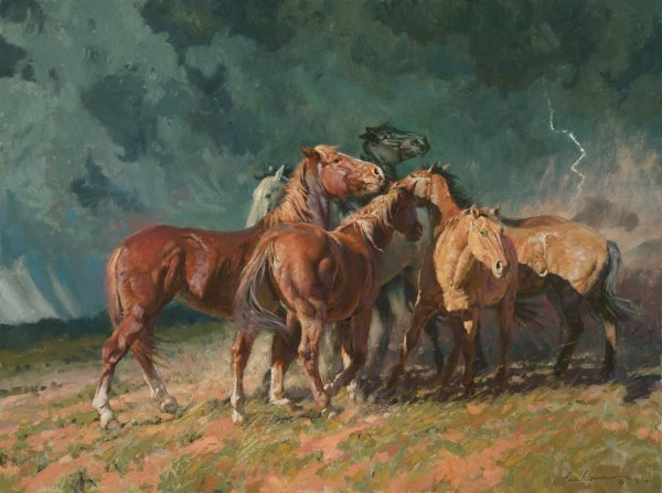 Storm on the Plains by Bruce Greene
