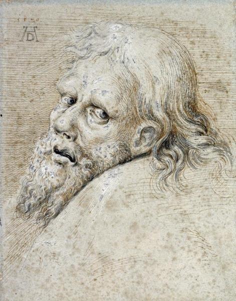 ALBRECHT DURER - THE HEAD OF A BEARDED MAN