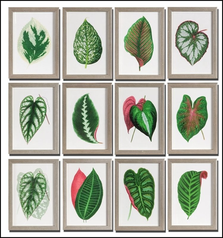 LEAVES FRAMED ART SET/12