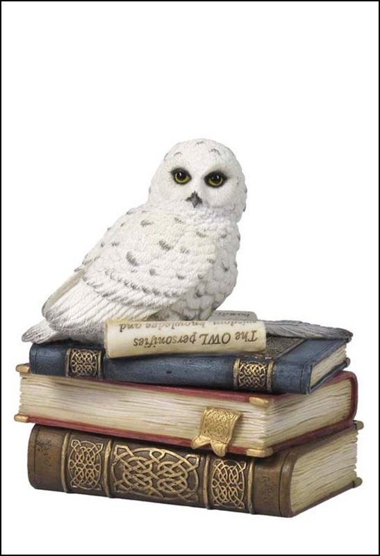 SNOW OWL ON BOOKS TRINKET BOX