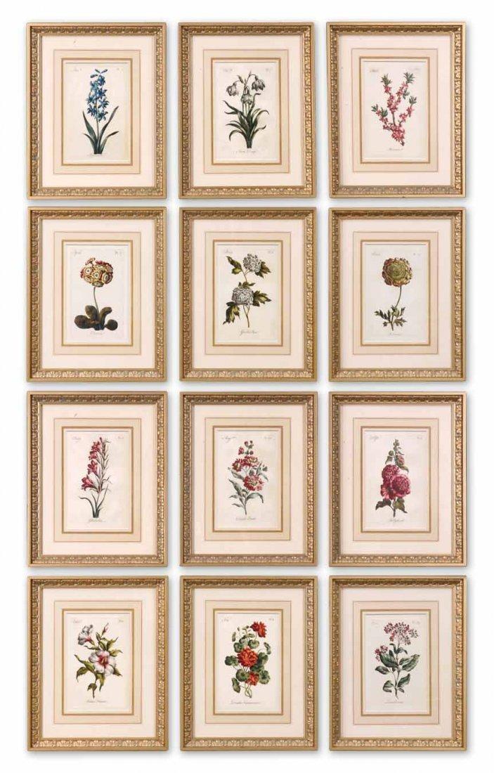 FLOWER OF THE MONTH FLORAL ART SET/12
