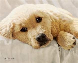 BEST LOVED BREEDS: GOLDEN RETRIEVER - JOHN WEISS
