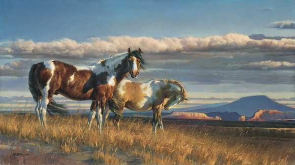 The Painted Desert by Nancy Glazier