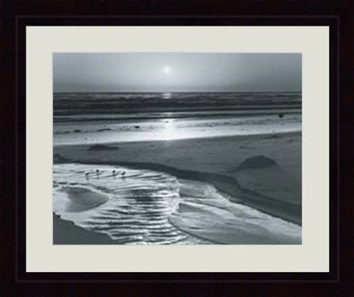 Ansel Adams - Birds On A Beach By Ansel Adams.