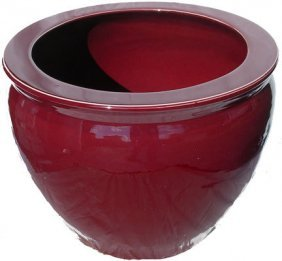 Chinese Porcelain Fish Bowl Planters Glazed In Oxblood
