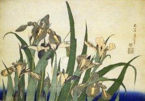 Hokusai - Irises