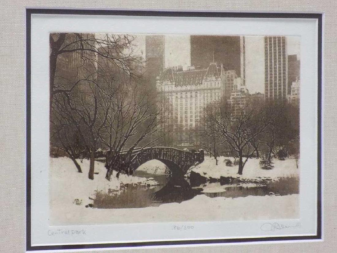 KLEIN - CENTRAL PARK NEW YORK SIGNED ENGRAVING