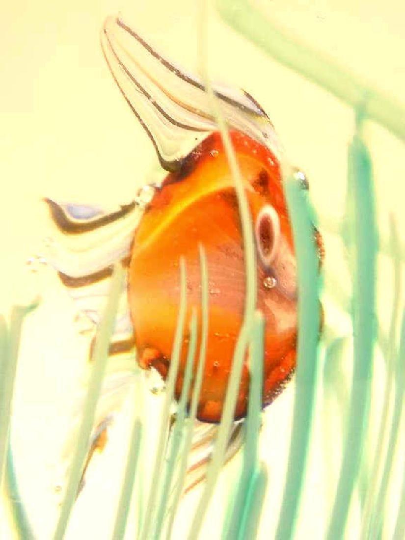 BIG MURANO SWIMMING FISH ART GLASS - 2