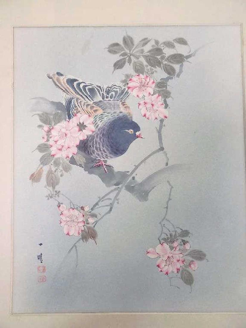 ISSRI - JAPANESE PIGEON MIXED MEDIA WATERCOLOR