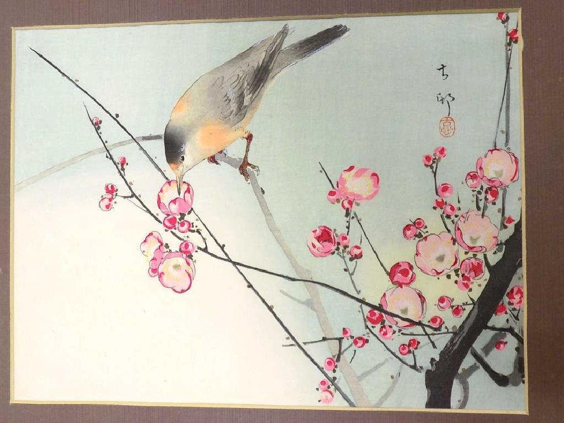 KOSON - JAPANESE BIRD MIXED MEDIA WATERCOLOR