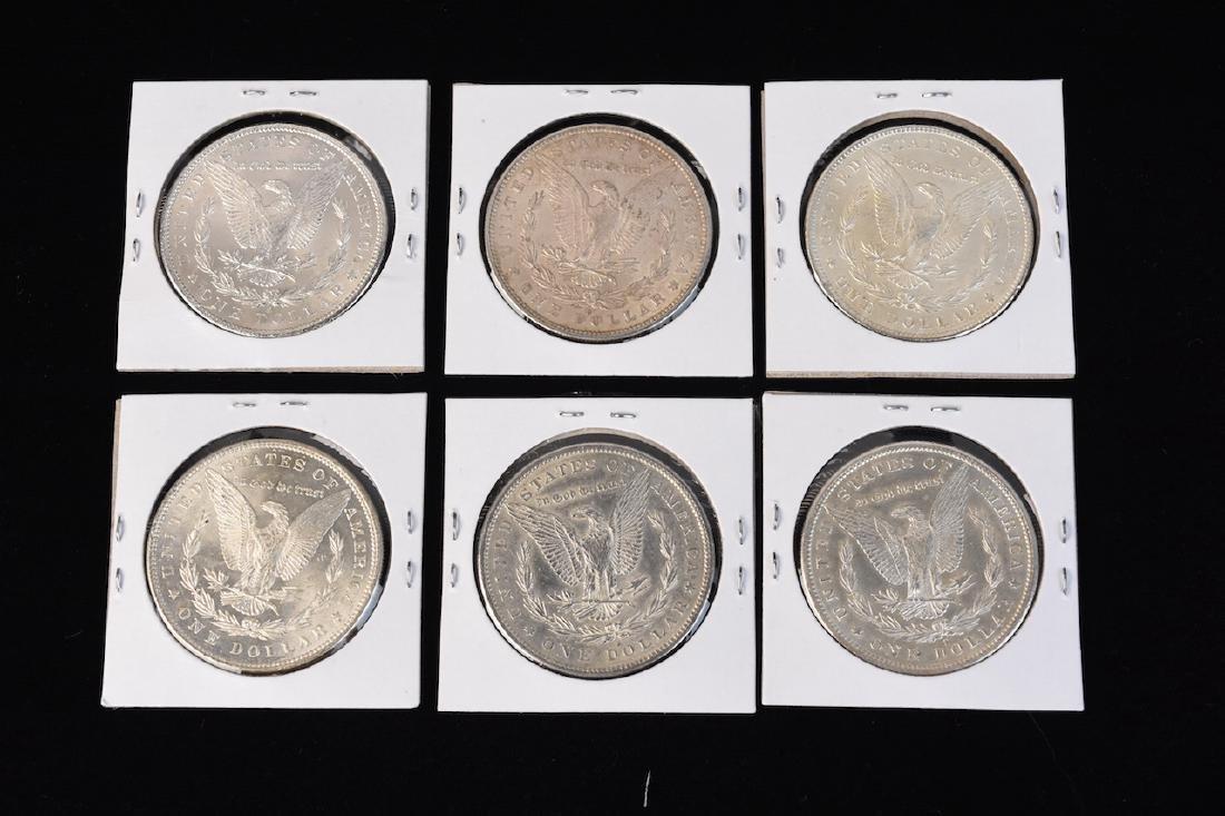 (6) Morgan Silver Dollars - 8