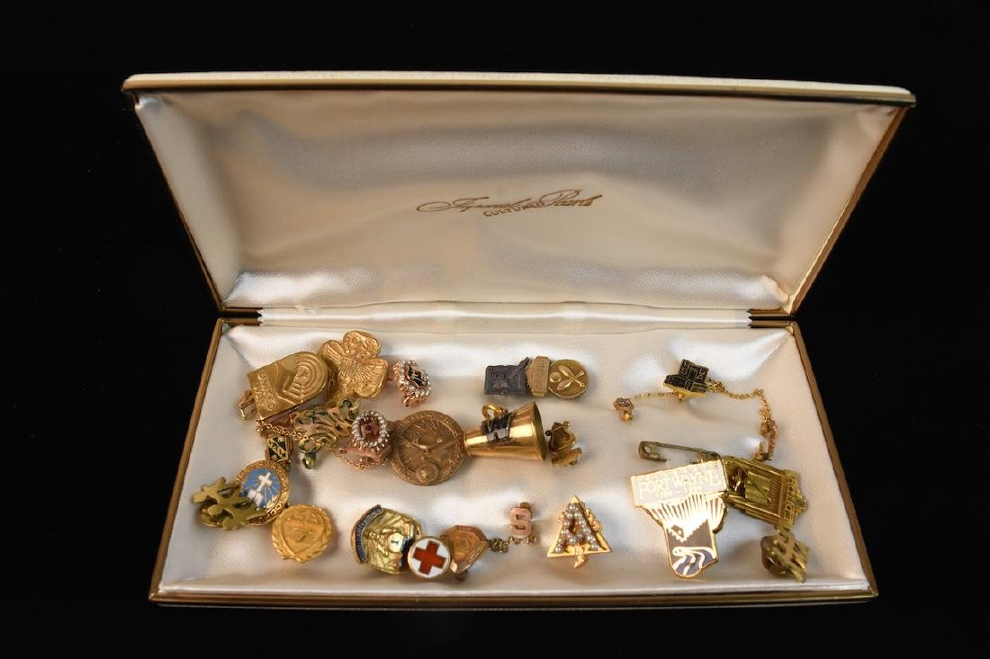 Assorted Association Lapel Pins