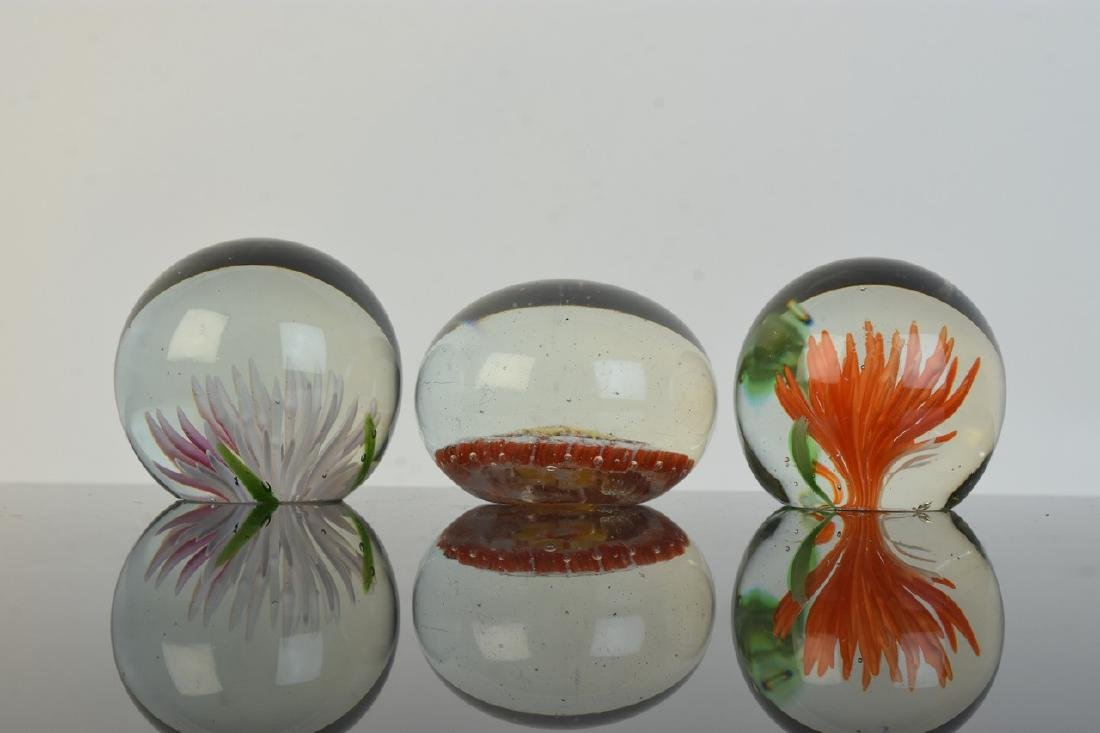 (6)Vintage Paperweights of All Sizes - 4