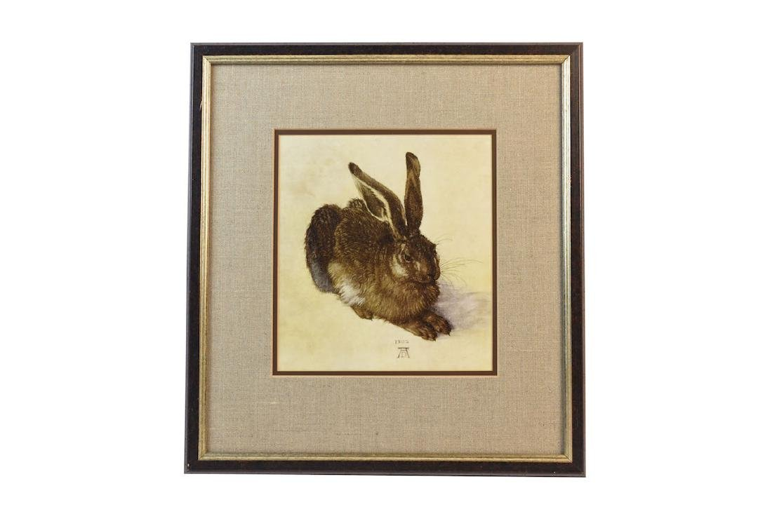Young Hare Print by Albrecht Durer
