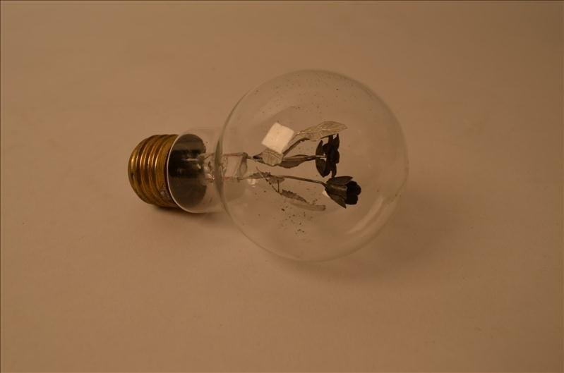 37: Unique Light Bulb w/ Flower Design Filament