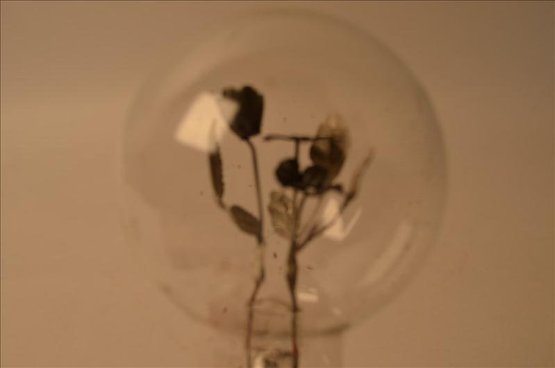 37: Unique Light Bulb w/ Flower Design Filament - 2