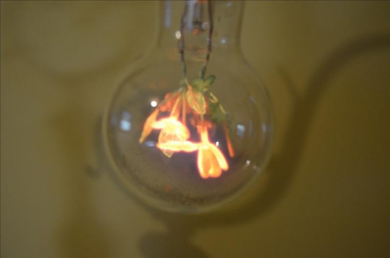 37: Unique Light Bulb w/ Flower Design Filament - 4