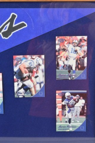 *1999 Colts AFC East Champions Collectibles - 5