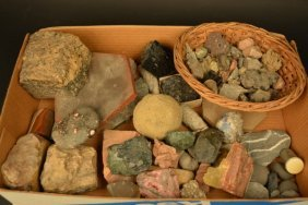 Large Lot Of Assorted Fossils, Rocks & Stones