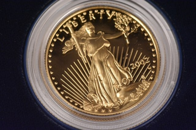 2002 One-Half Ounce $25 American Eagle Coin