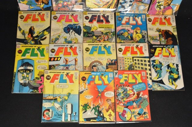 (18) The Fly, DC Comics - 2