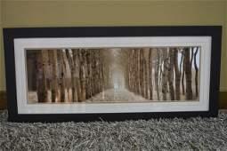 Panoramic Wooded Birch Landscape Framed Art Print