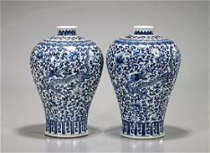 Pair Chinese Blue & White Porcelain Meiping Vase