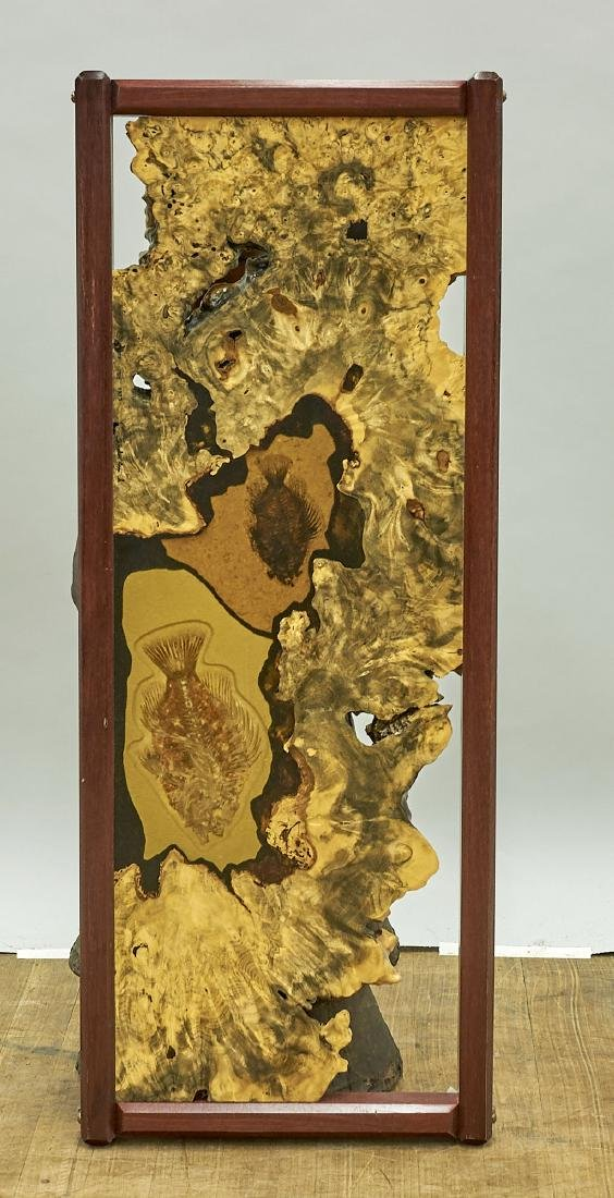 Polished Wood & Fossil Slab