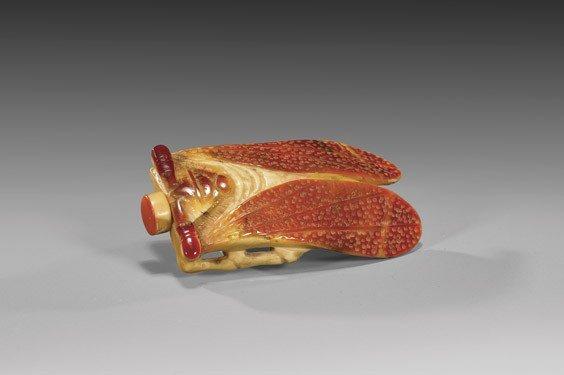 CARVED HORNBILL SNUFF BOTTLE: Cicada