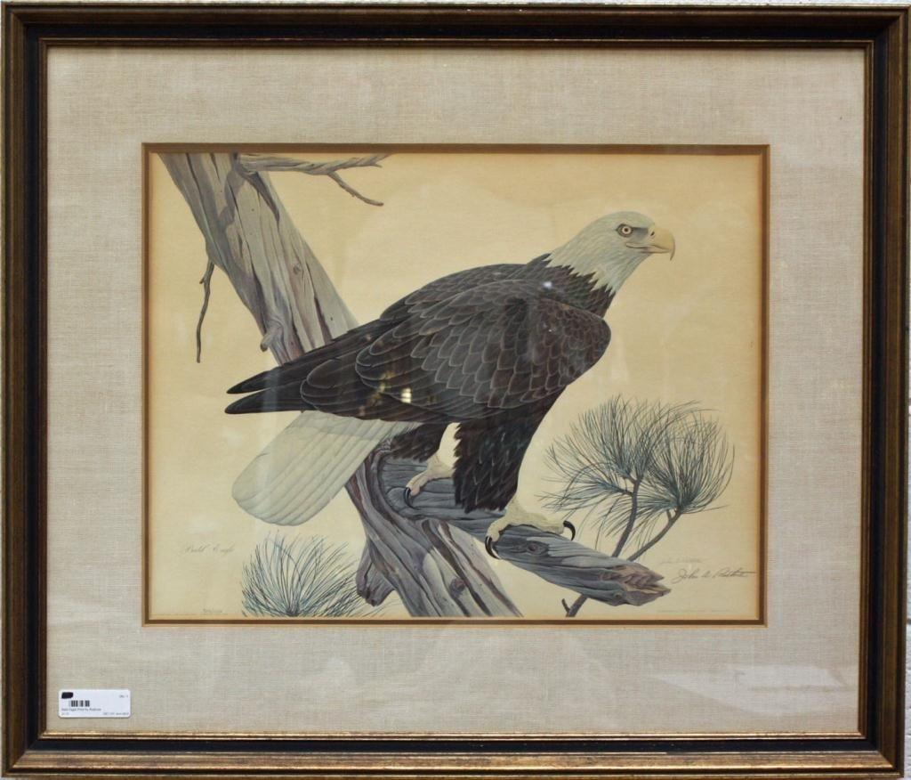 1: Bald Eagle Print by Ruthven