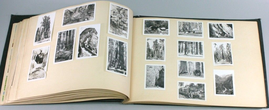 186: Large Vacation Scrapbook