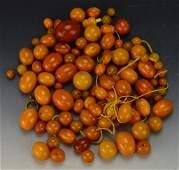 Butterscotch or Egg Yolk Amber Grouping