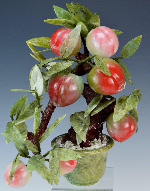 Jade Apple Fruit Tree