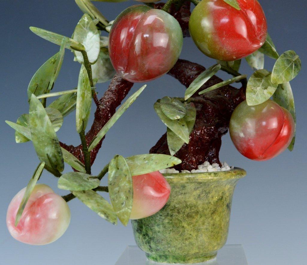 Jade Apple Fruit Tree - 3