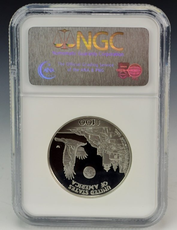 1998 W Eagle Platinum Coin $100 NGC PF69 - 2