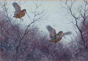 Aiden Lassell Ripley (1896-1969) Two Woodcock