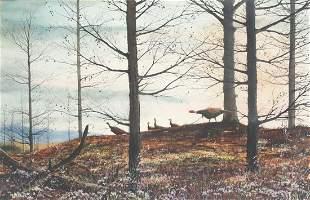 David A. Hagerbaumer (1921-2014), Wild Turkey