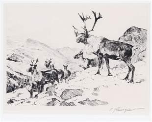 Carl Rungius (1869-1959), Mountain Caribou