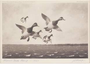 Joseph Day Knap (1875-1962), Federal Duck Stamp
